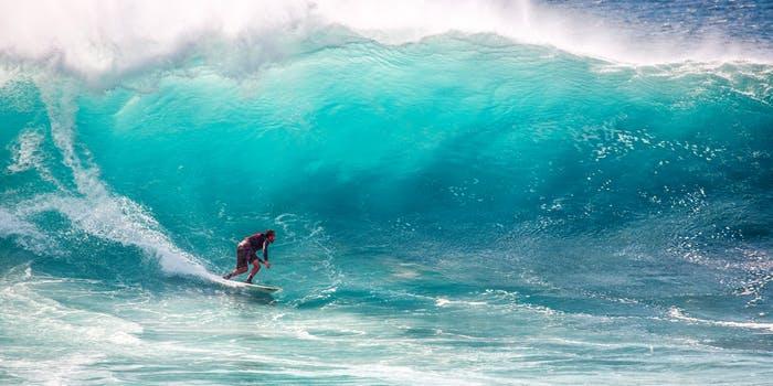 peak performance neurofeedback surfing