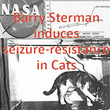 Barry Sterman induces seizure resistance in cats in 1972 NASA experiment with SMR neurofeedback training