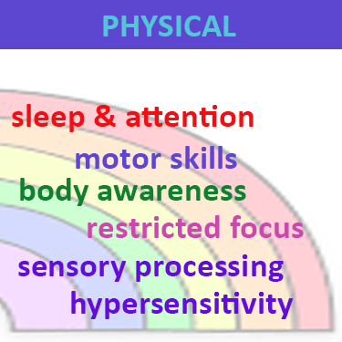 Spectrum of physical functionality in autism spectrum disorder comprising sleep, motor skills, body awareness, restricted focus and repetitive behaviour, sensory processing and hypersensitivity, which can be addressed with neurofeedback training
