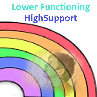 Low functioning autism with high support