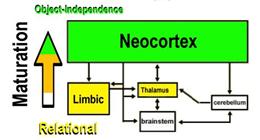 Neocortex and limbic system integration in neurofeedback