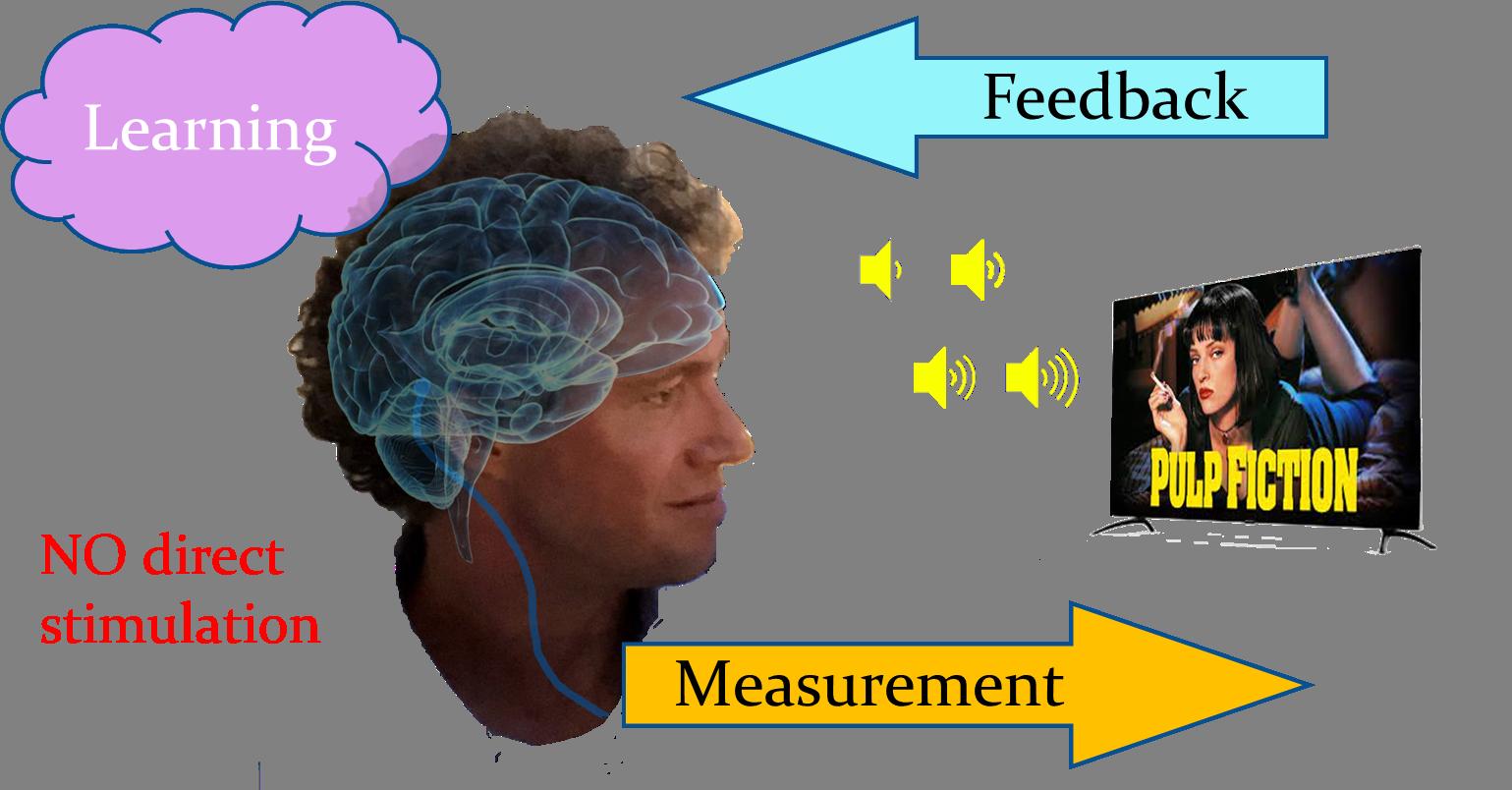Neurofeedback training relies on real-time EEG measurement, analysis and translation into feedback