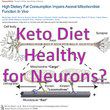 Is the Keto Diet Healthy for Neurons? High Dietary Fat Consumption impairs Axonal Mitochondrial Function in vivo